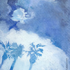 Blue Palm Trees w Clouds