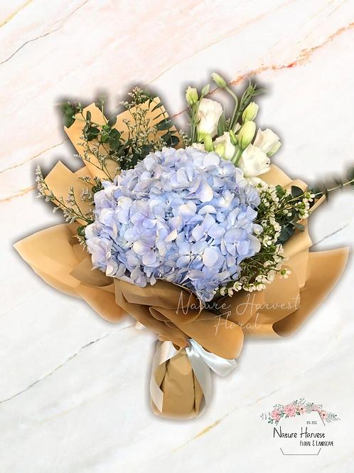 Blue hydrangeas with white Eustoma 02529
