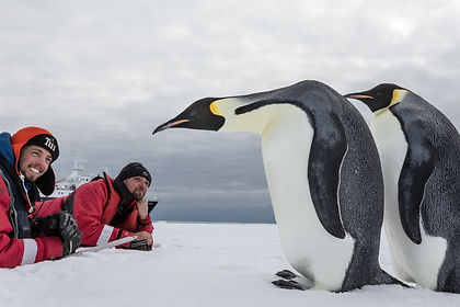 Visiting the Emperor Penguins near Snow Hill Island in the Weddell Sea is unlike any expedition cruise to Antarctica.  Using helicopters we will get you within striking distance of the rookery.  During the voyage you will of course also see plenty of other wildlife, including Adélie and Gentoo penguins, and marvel at the stunning scenery.