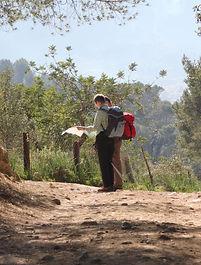 hiking-296871 (1).jpg