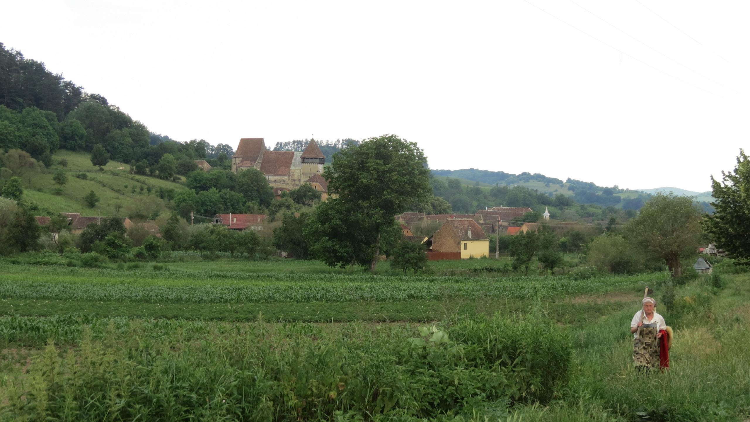 046_-_Copșa_Mare_fortified_church