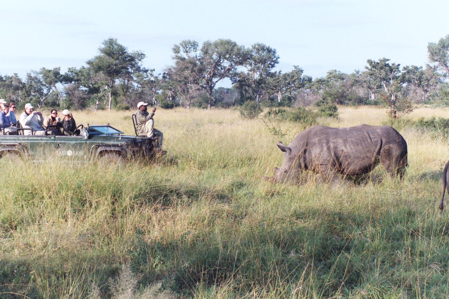 Rhino encounter in private reserve