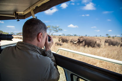 Travel on a safari to Tanzania, to the rolling plains of the Serengeti, the wildlife-filled caldera of the Ngorongoro Crater and the lions and baobabs of Tarangire; Tanzania will impress you like few other countries will.  This tailor-made luxury safari will take you to three very different parks in northern Tanzania, each with their own scenery and resident wildlife.   As with all our private tours, this sample itinerary can be completely tailored to create the perfect journey of discovery for you.