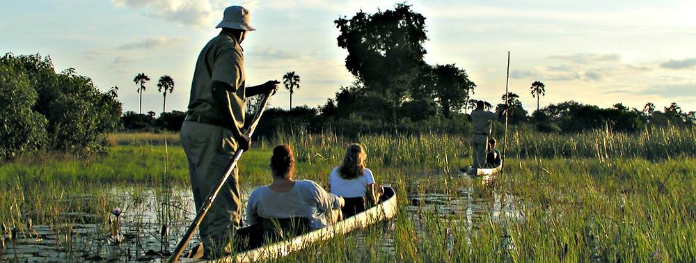 Mokoro Okavango Delta safari  Botswana Africa