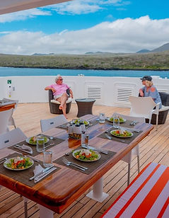 Ecuador's undisputed highlight is the Galapagos Archipelago, with it's otherworldly volcanic landscapes and stunning array of wildlife. Snorkel with sea lions and penguins, come close to boobies and albatrosses, iguanas and tortoises and watch whales. This is nature in its primordial state, nature as it used to be. This ten-day cruise package will give you 7 nights in the Galapagos Islands, the ideal length for anyone wishing to get a good idea of the variety of wildlife and natural history.  Please contact us for our huge selection of Galapagos cruises.