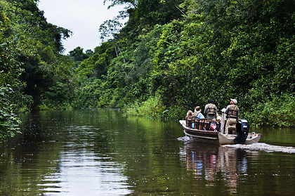Discover the heart of Brazil's Amazon on this expedition cruise and explore an ecosystem rich in tropical flora and fauna, including pink river dolphins, toucans, hawks, ibises, parrots, iguanas, lizards, monkeys and buffaloes.  We also visit former penal colonies and the great city of Bélem, known for its market and its fort.