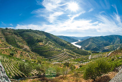 Portugal's Basto region and Douro Valley, east of the vibrant city of Porto, are perhaps the country's best-known wine-producing areas, with vinho verde and port the most famous wines.  Cultural visits alternate with leisurely walks, showing you the are in depth.