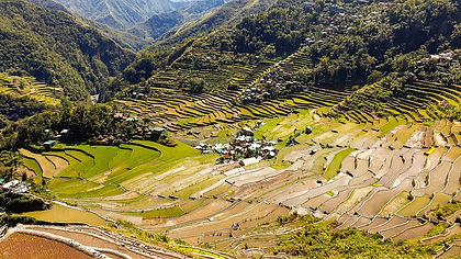 The Philippines, an island paradise hemmed between the Pacific and the South China Sea, is a country known for its smoldering volcanoes, green rice terraces, golden-sand beaches and wonderful people.  Yet there is much more to discover.  This two-week tour of the Philippines takes you from the busy capital Manila to the Banaue Rice Terraces, visiting volcanoes, burial caves and colonial cities en-route.  You have the chance to walk the rim of Mount Pinatubo before spending a few days on the beach on Bohol Island