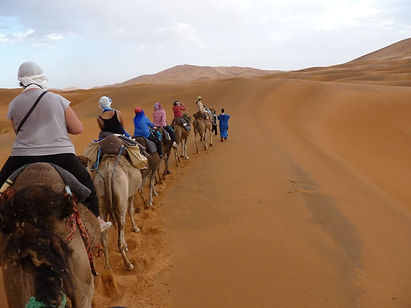 This tour of Morocco will take you from the Hassan II Mosque in Casablanca through all the highlights.  The imperial cities of Fez, Marrakesh, Meknes and Rabat all feature on this cultural highlights tour.  But we also take you in to the Sahara for a desert safari, as well as to the kasbahs, valleys and gorges of the Atlas mountains and beyond.