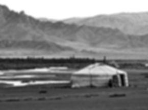 a yurt stay is travel to   is but one of the highlights of travel to Mongolia.  Others include Ulaan Baatar, Terelj, Khustain, Karakorum, Erdene Zuu, Orkhon Valley, Tsenkher Hot Springs, Lake Khovsgol, Amarbayasgalant Monastery, Gobi Desert, Bayanzag Flaming Cliffs, Khongoryn Els, Altai Mountains, eagle hunters, horseback rides, yaks