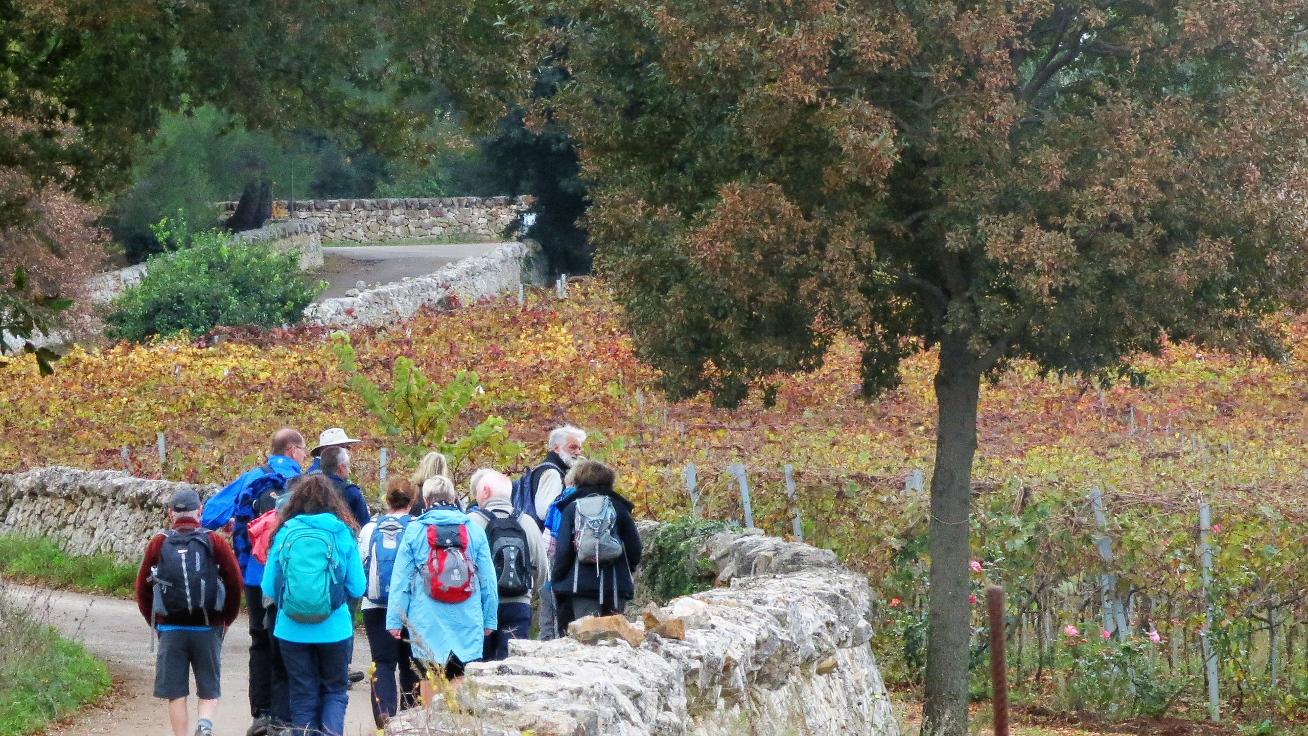 Walking in Puglia and Matera