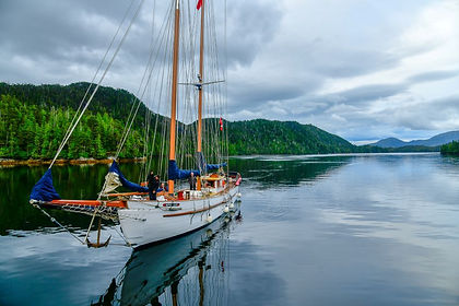 Formerly known as the Queen Charlotte Islands, the archipelago of Haida Gwaii lies 130 kilometres off Canada's west coast.   The island group is also knows as the 'Galapagos of the North' for its endemic and rare species.   On this adventure by land and by sea you will cruise into Gwaii Haanas National Park Reserve at the southern tip of the islands, where you visit ancient village sites and see the remains of long-abandoned big houses and memorial poles.  It is here you will listen to the stories of the Haida Guardian Watchmen who will share their culture and heritage with you.   As you cruise along the pristine beaches and remote coves of this rugged coast you get to experience rich intertidal life and old growth temperate rainforest.  You may see Stellar Sea Lions, at low tide you may spot black bear feeding along the shore while out in the ocean you may spot humpback whales.  Meanwhile there are millions of birds to be seen, including puffins and bald eagle. Throughout the cruise you will take rides in zodiacs, make frequent shore excursions, go kayaking or fishing and learn from naturalists encountered along the way.