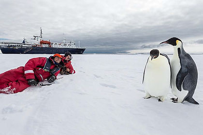 This semi-corcumnavigation of Antarctica from New Zealand to South America (or v.v.) is the ultimate adventure expedition cruise.  Explore little visited islands such as Macquarie, Campbell and Peter I Island and their attended flora and fauna, relive the lives of polar explorers such as Scott, Shackleton and Amundsen as you visit their huts at Cape Evans, take a helicoper ride into the Dry Valleys near McMurdo Sound and marvel at the height of the Ross Ice Shelf.  All the while you encounter several species of albatross, petrel, skua, seal, whale and penguin - this truly is a journey to the edge of the world and an expedition which will be etched in your memory for ever.