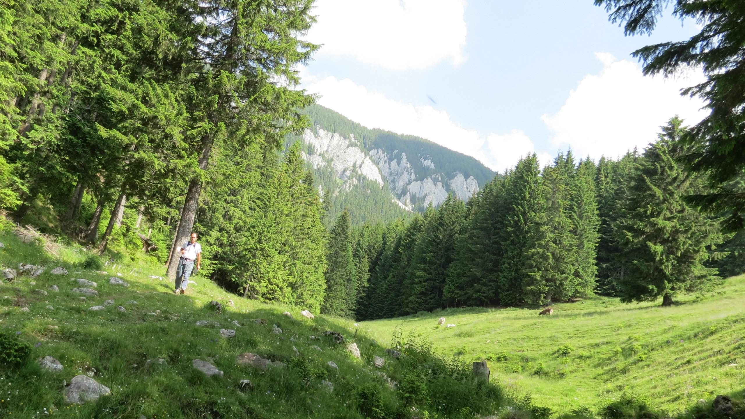 123 - Hiking Magura