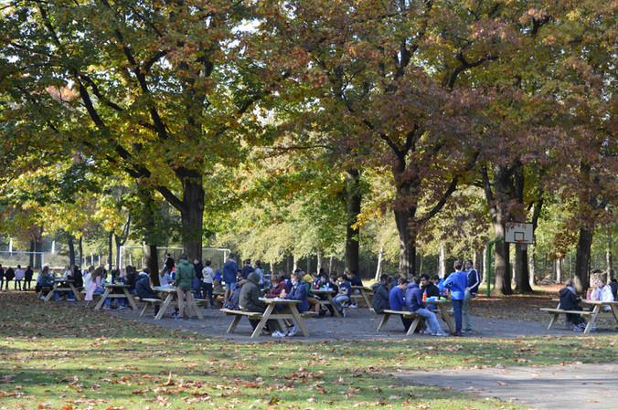 Picknick onder een heerlijk herfstzonnetje