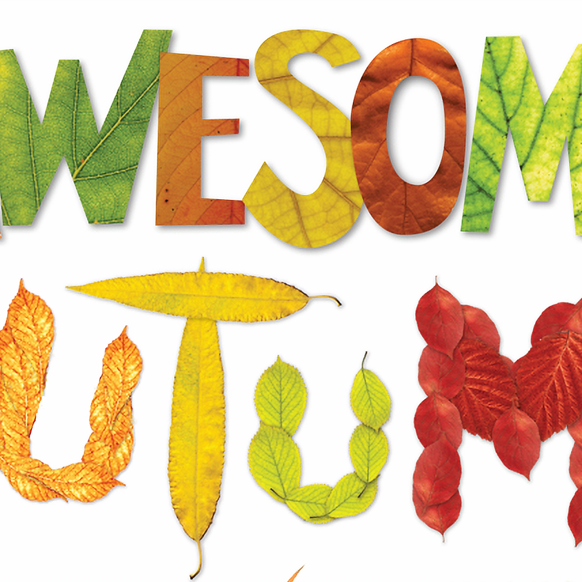 Awesome Autumn Play Date at NYKC WEA