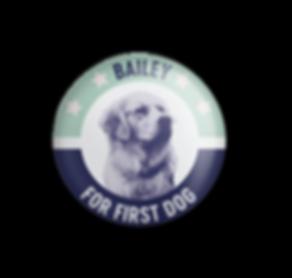 Pin_Bailey.png
