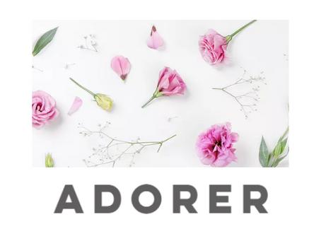 adorer(アドレ)という社名について