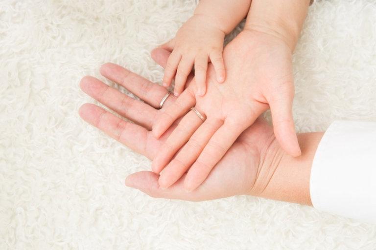 家族の手.jpg