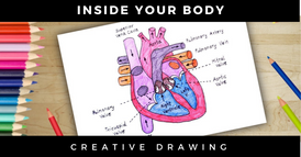 desenho + anatomia-2.png