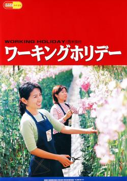 ワーキングホリデー(西米良村・2003年)