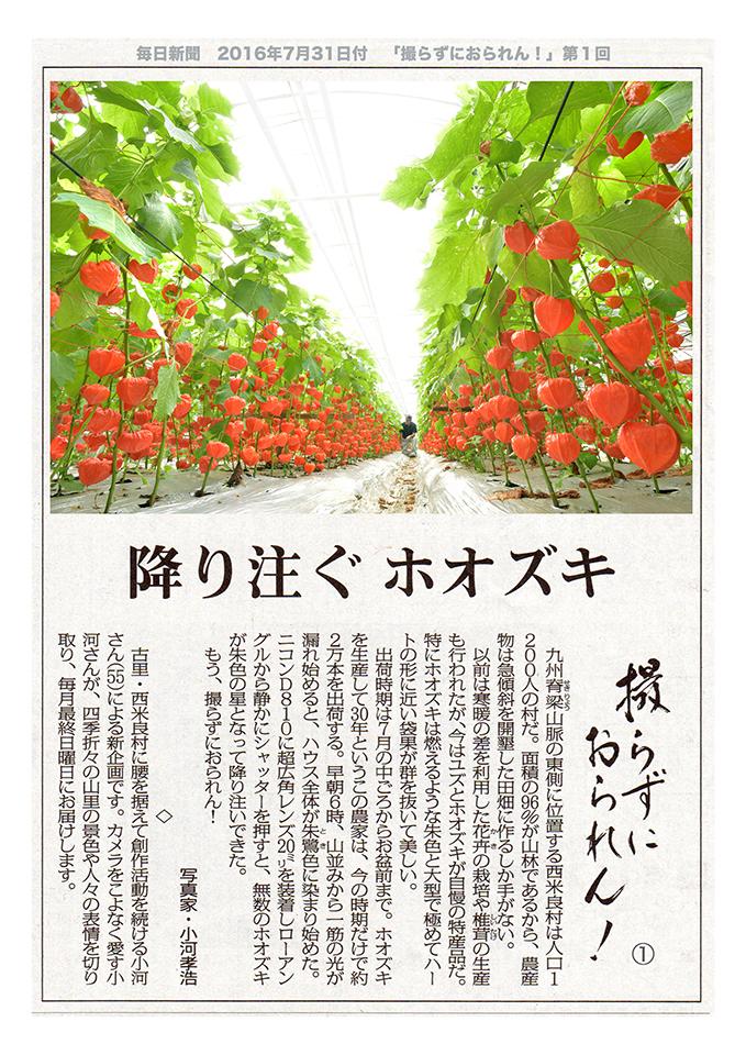 1・西米良村 07/31.2016