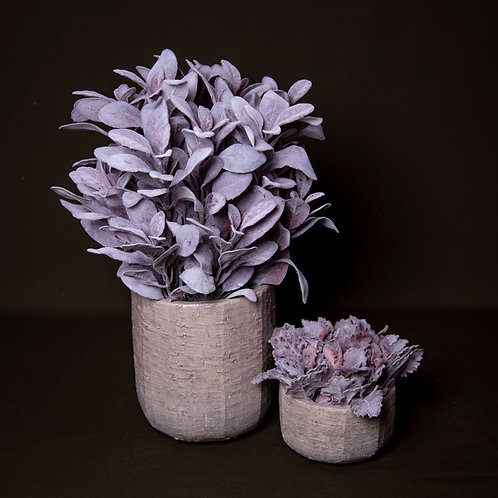 Grey stone Dusty Mauve Collection