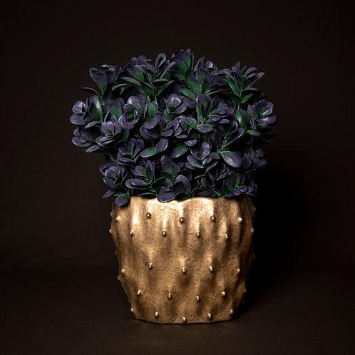 Purple Crassula in Gold Dimple Vase