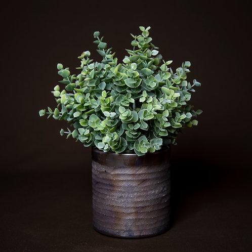 Eucalyptus in Grey Glass Vase
