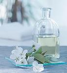 Aromatherapy+Oil.webp