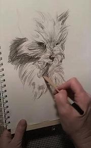 pop up quick sketch.jpg