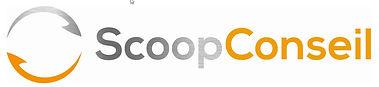 scoop_conseil_new_logo_gris_alcantara_fé