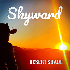 Skyward_DS_cover.png