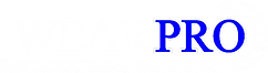 WearPro White and Blue Logo.png