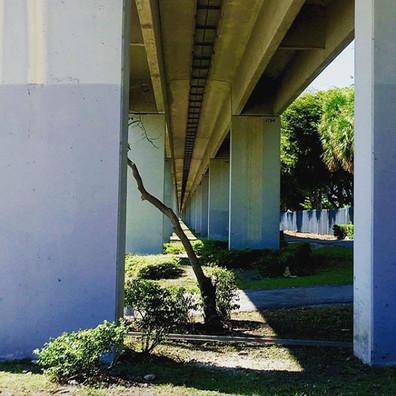 Admiring the urban beauty under the Metro rail - Miami
