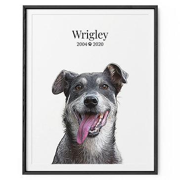 Framed Pet Portrait