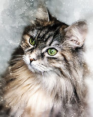 watercolor-cat-portrait.jpg