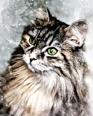 watercolor-cat-portrait.jpg