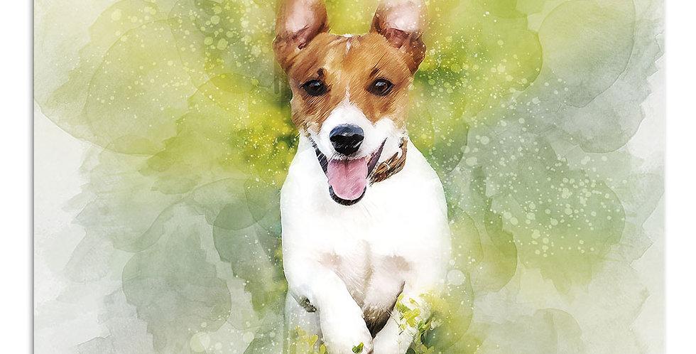 Affordable Pet Portraits