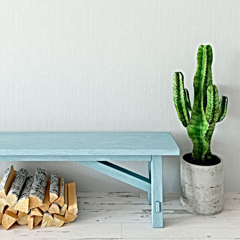 cactus-bench-background.jpg