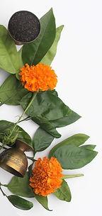 Earl Grey Botanical.jpg