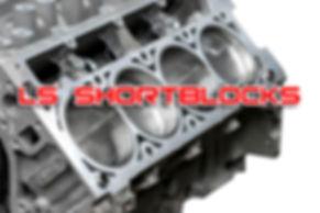 LS Shortblocks.jpg