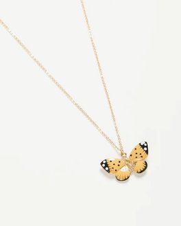 yellow butterfly nlace.jpg