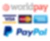 worldpay&paypal logo.png