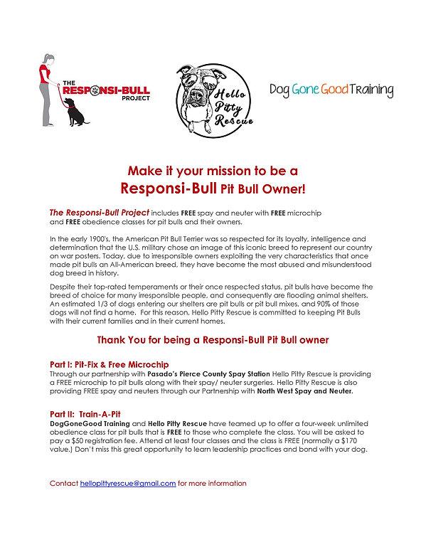 Responsi-bull Flyer-web.jpg
