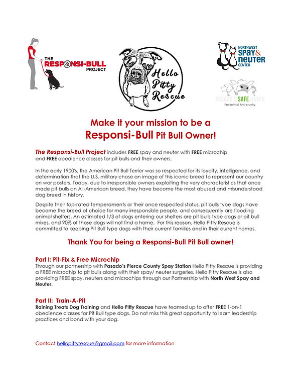 Responsi-bull Flyer 2021.jpg