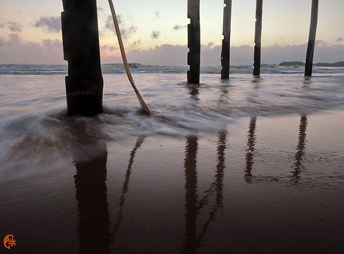 Poles reflect