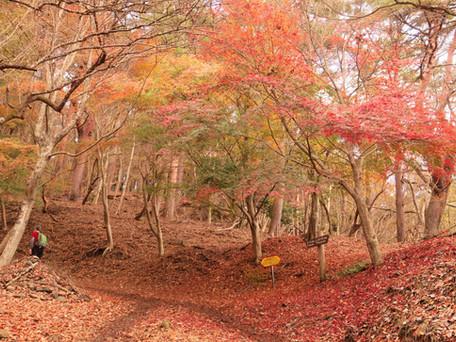 山塾堀山プレボッカ 2016.11/26
