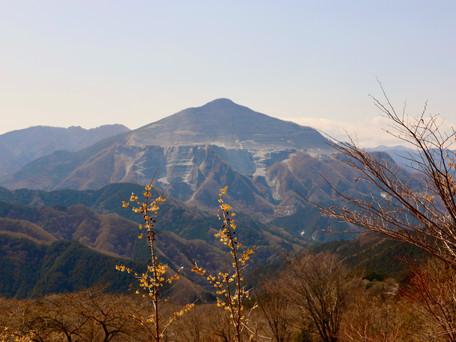 芦ヶ久保駅から日向山 2021/03/19