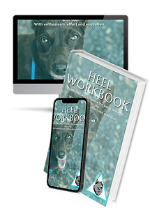 Heelers Workbook